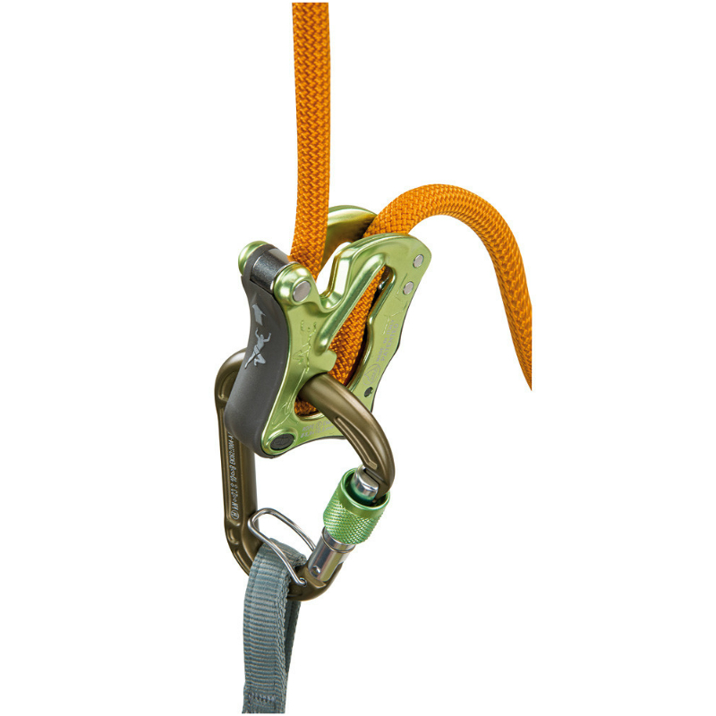 Climbing Technology Click Up