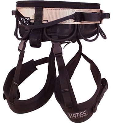 Yates Shield Back View