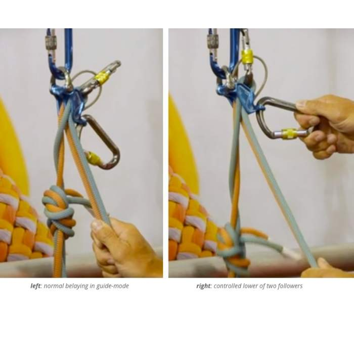 DMM Pivot with rope