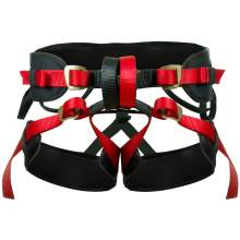Fusion Rappelling Harness