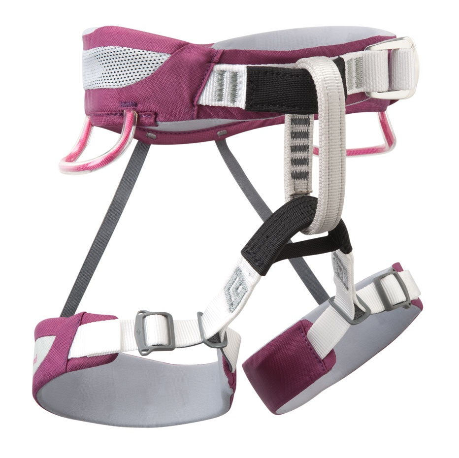 Black Diamond Wiz Kid Climbing Harness