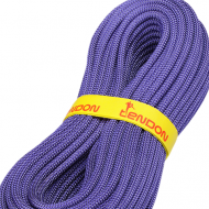 Tendon 9.1 MM Ambition 30m Dry